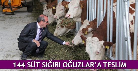 144 süt sığırı Oğuzlar'a teslim