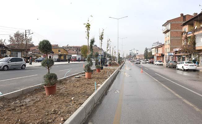 35 metrelik bulvar yol ağaçlandı