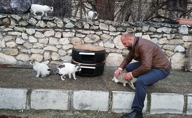 Eski lastikler kedilere ev oldu