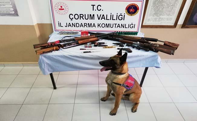İskilip'te silah kaçakçılığı