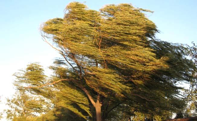 Rüzgar ve fırtına uyarısı