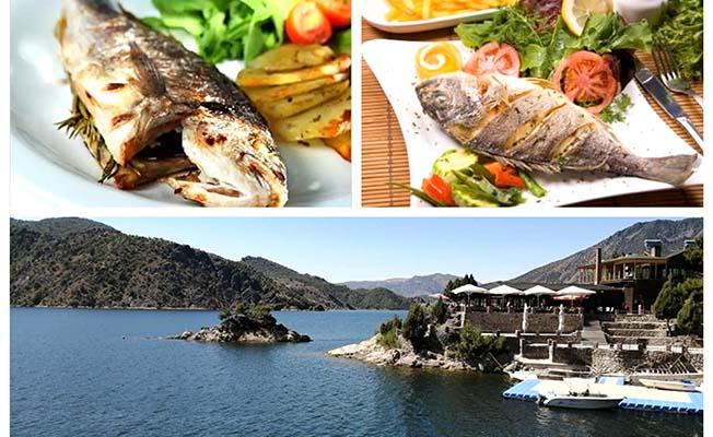 Altın Koz'da balık sezonu açıldı