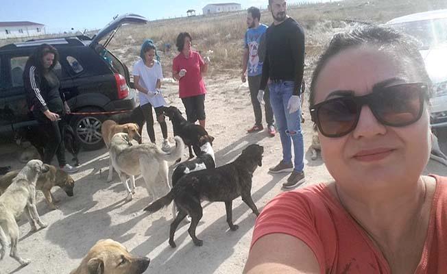 Hayvanseverler Tufan Köse'ye teşekkür etti