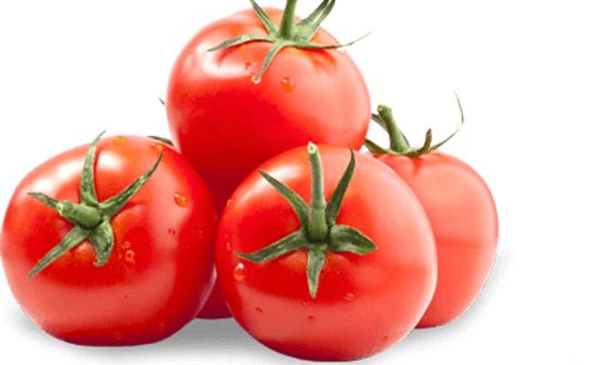Çorum'da şampiyon domates