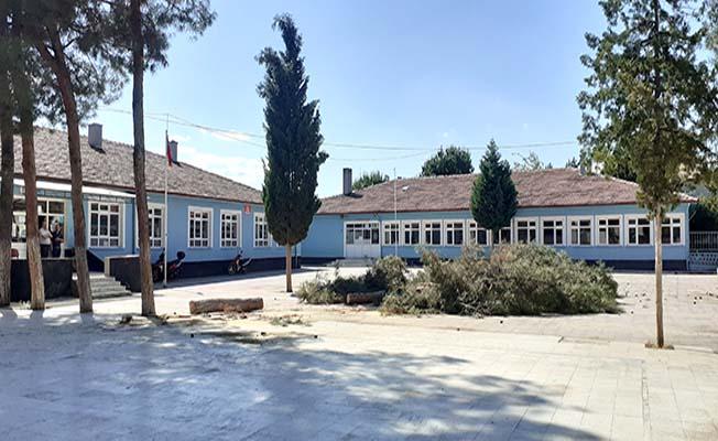 Okul bahçesindeki ağaçlar kesildi