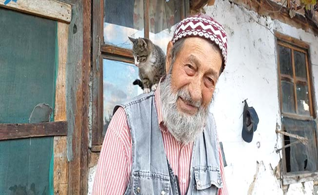 65 yaş aylığı ile hem kendine hem kedilere bakıyor