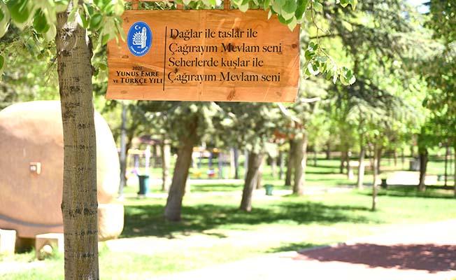 Yunus Emre'nin sözleri ağaçlarda
