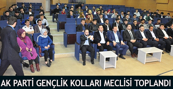 AK Parti Gençlik Kolları meclisi toplandı