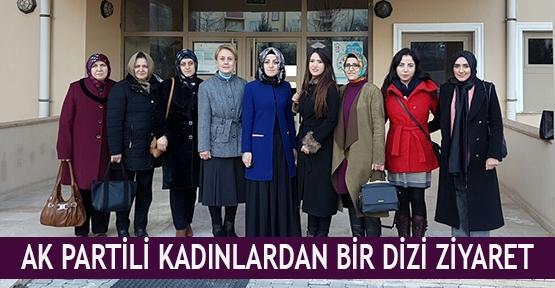 Ak Partili kadınlardan bir dizi ziyaret