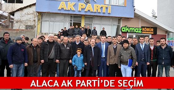 Alaca AK Parti'de seçim