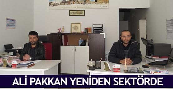 Ali Pakkan yeniden sektörde