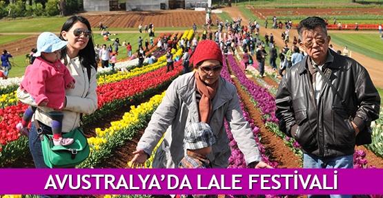 Avustralya'da Lale Festivali