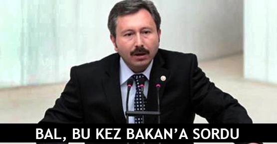 Bal, bu kez Bakan'a sordu