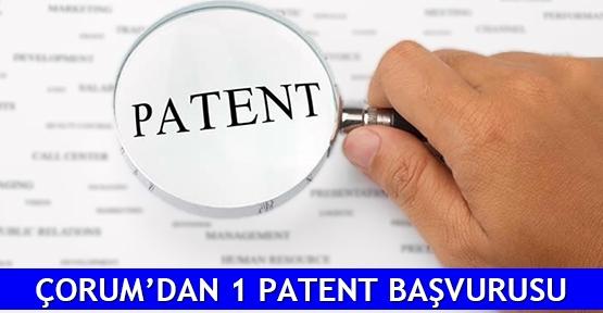 Çorum'dan 1 patent başvurusu