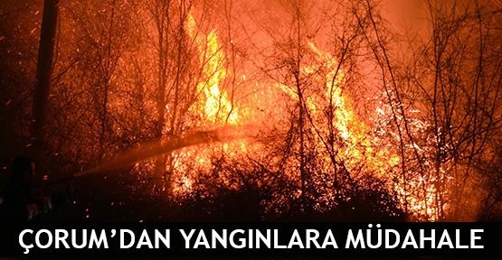 Çorum'dan yangınlara müdahale
