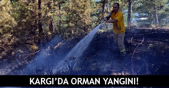 Kargı'da orman yangını!