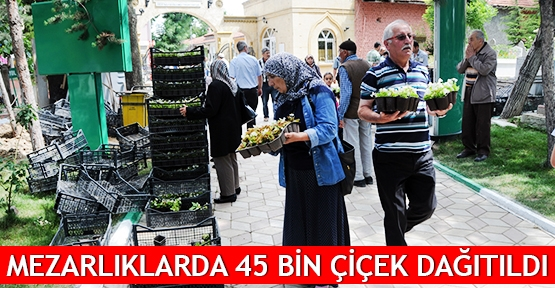 Mezarlıklarda 45 bin çiçek dağıtıldı