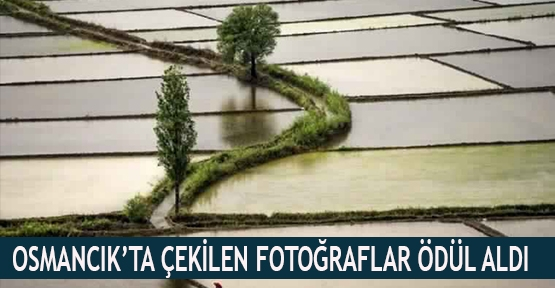 Osmancık'ta çekilen fotoğraflar ödül aldı