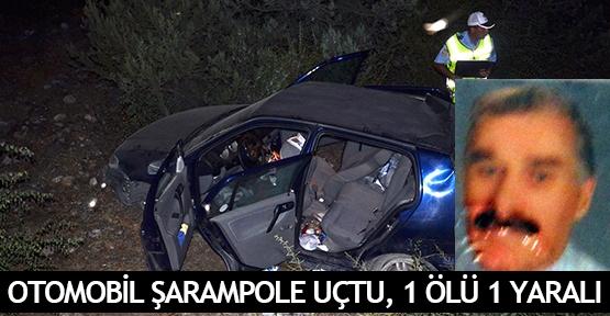 Otomobil şarampole uçtu, 1 ölü 1 yaralı
