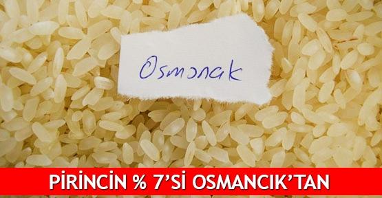 Pirincin % 7'si Osmancık'tan