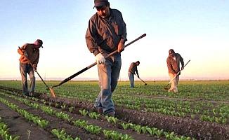 İşte 2018'in tarımsal destekleri