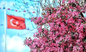 Çorum'da bahar havası