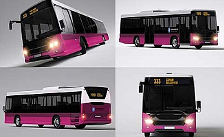 Otobüsler vatandaşın seçtiği renk olacak