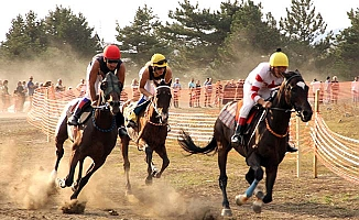 At yarışlarında birincilik