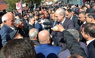 Tek dertleri Erdoğan'ın gitmesi