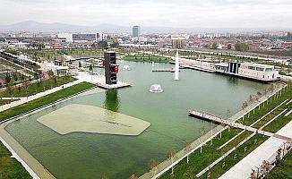 Gölet temizleniyor
