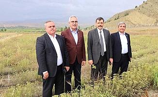 Meclis heyeti araziye çıktı