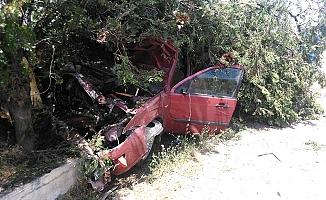 Otomobil çarptığı ağacın altında kaldı