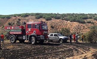 Anız yaktılar, 1000 ağaç kül oldu!