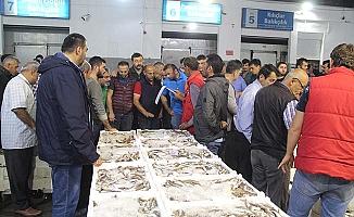 Balıklar Samsun'dan