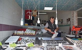 Enva-i çeşit balık tezgâhta