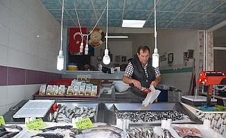 Envay-ı çeşit balık tezgâhta