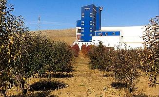 Enerji santrali ve meyve bahçesi yan yana