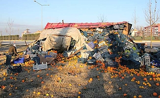 Portakal ve limonlar yol kenarına saçıldı
