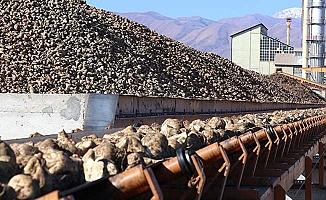 Şeker fabrikalarına 1090 personel alınacak