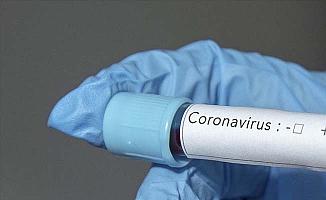 Çorum'da koronavirüs vakasında artış