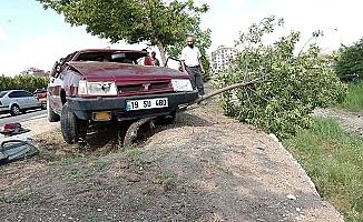 Dereye düşmekten ağaç kurtardı