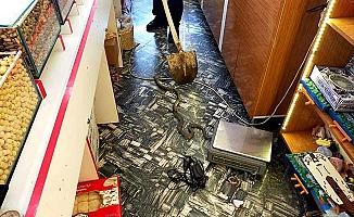 İşyerine yılan girdi