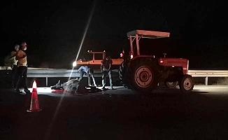 Araç çarptı, 2 hayvan telef oldu, sürücü bulunamadı