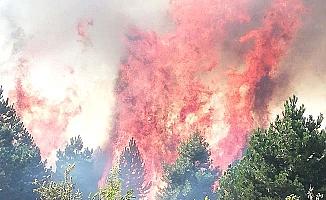 Sungurlu'da yangın, ekipler seferber