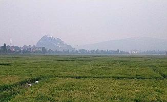 Yangının dumanı Osmancık'a ulaştı