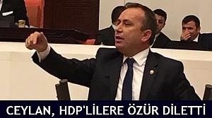 Ceylan, HDP'lilere özür diletti