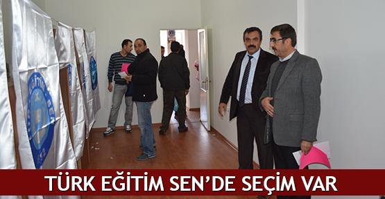 Türk Eğitim Sen'de seçim var
