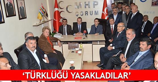 'Türklüğü yasakladılar'