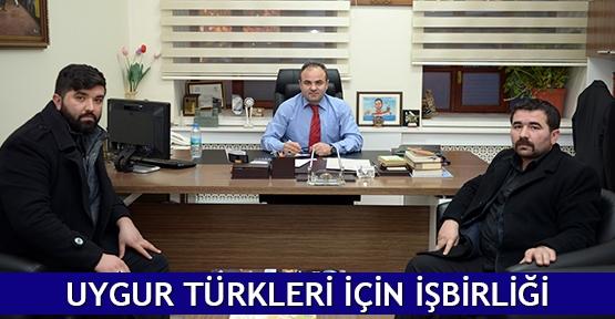 Uygur Türkleri için işbirliği