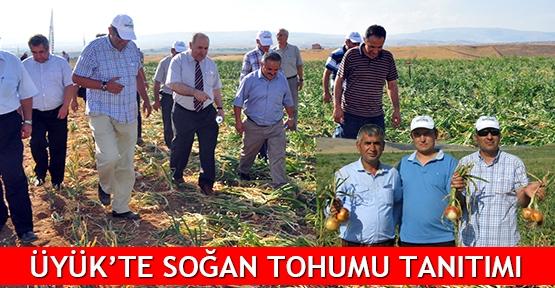 Üyük'te soğan tohumu tanıtımı